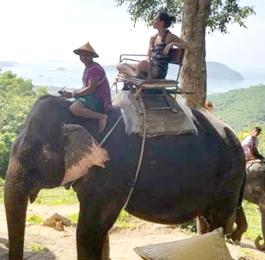 Taylor Lamberta, creator of the Memory Cafe activities, riding an elephant